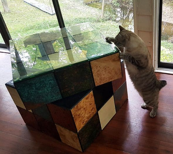 catastrophicreations-rubix-cube-cat-bed-rotating-top-section