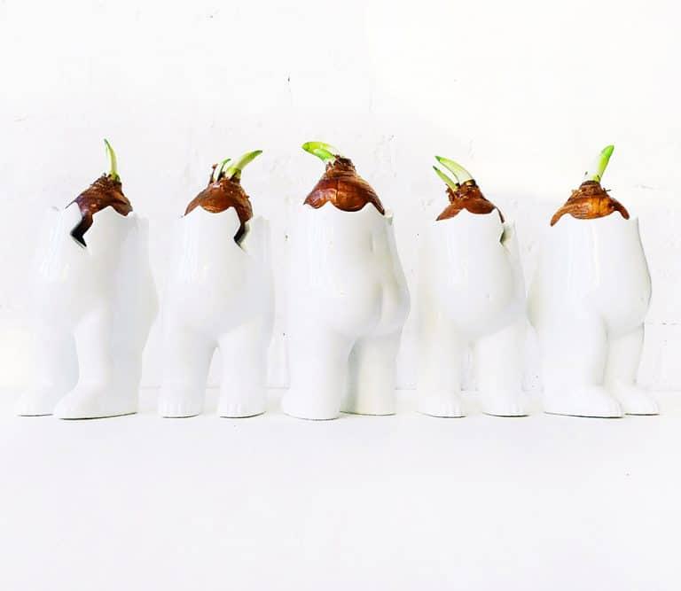 earth-sea-warrior-spring-tushiez-planters-home-vase