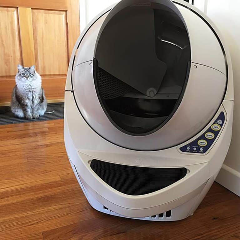 litter-robot-iii-open-air-automatic-self-cleaning-litter-box-appliance-quality