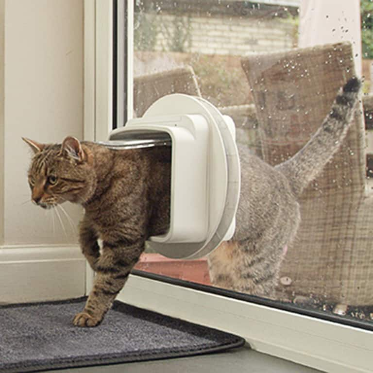 sureflap-microchip-pet-door-cat-doors
