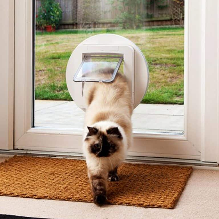 sureflap-microchip-pet-door-compatible-with-microships-formats-worldwide