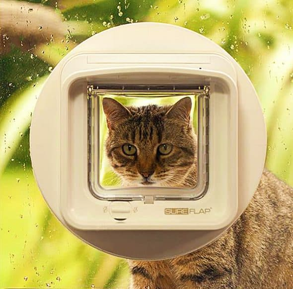sureflap-microchip-pet-door-programmable-catdoor