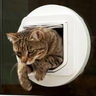 sureflap-microchip-pet-door-selective-entry
