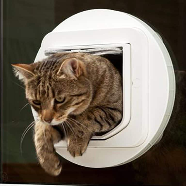 sureflap-microchip-pet-door-selective-entry