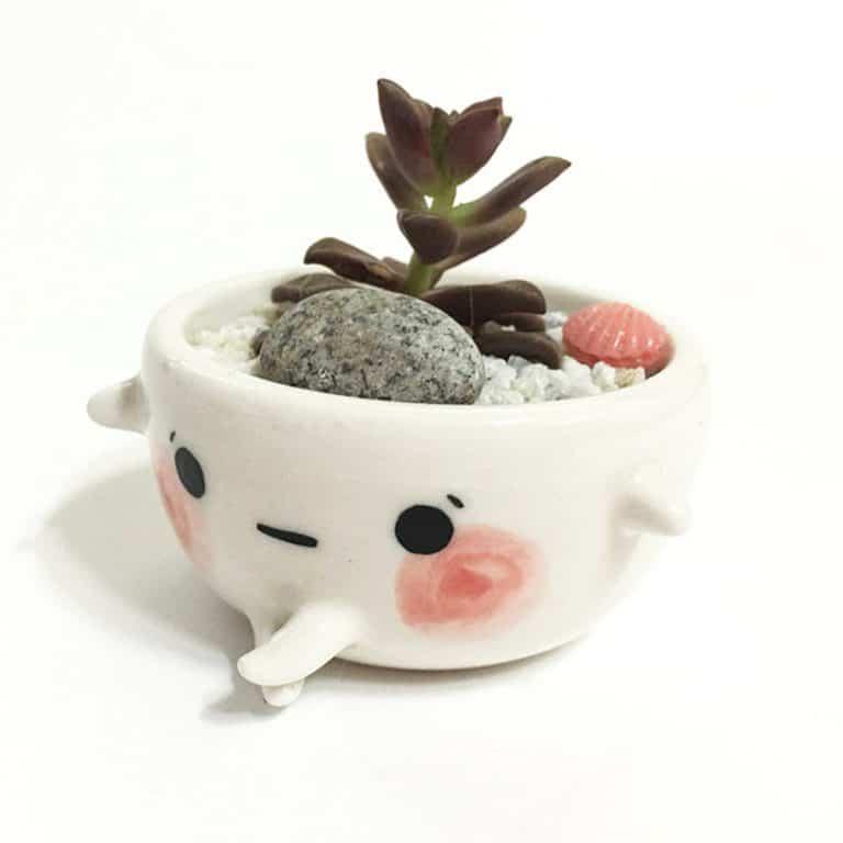 myostery-petit-bebe-bowl-super-white-clay