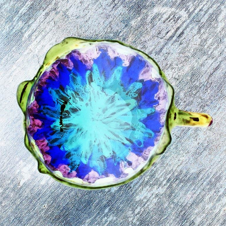 zernoderevo-rainbow-pride-flower-cup-container