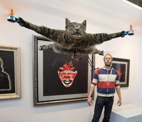 It's a bird, it's a plane… it's a cat?
