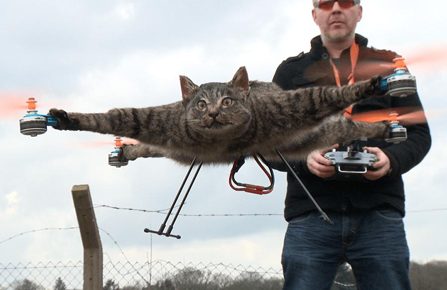 Сили ООС збили російський БПЛА-розвідник, обладнаний камерою з 12 об'єктивами для панорамної зйомки - Цензор.НЕТ 2627
