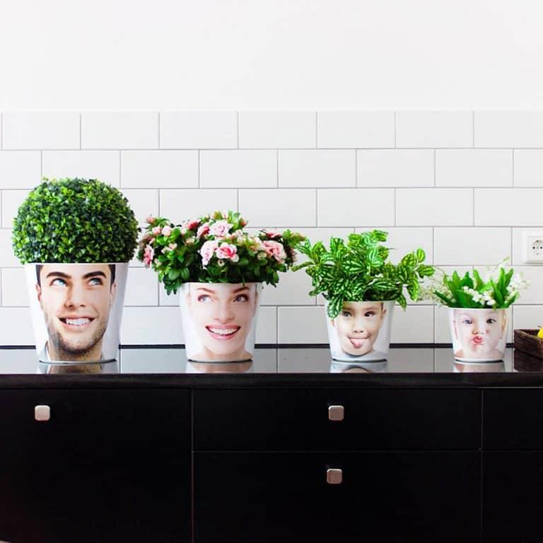 my-facepot-home-furniture