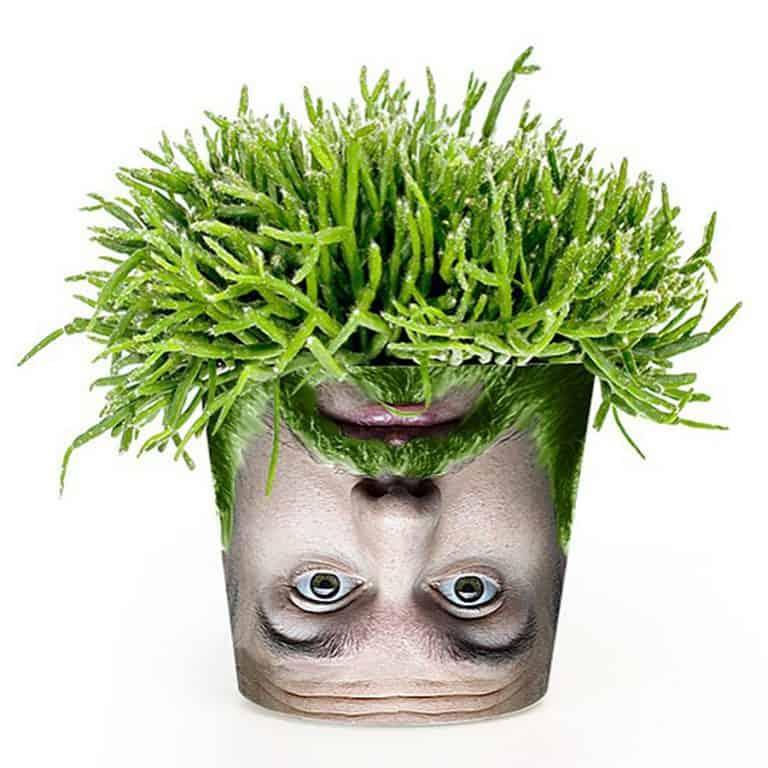 my-facepot-novelty-item
