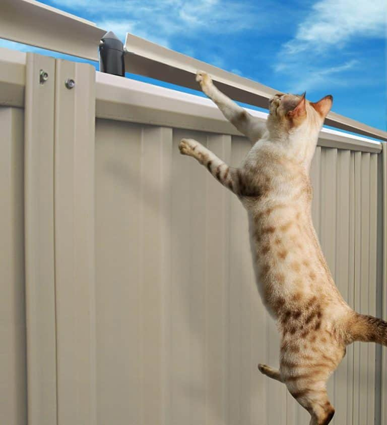 Oscillot Cat Containment System Fence Mounted