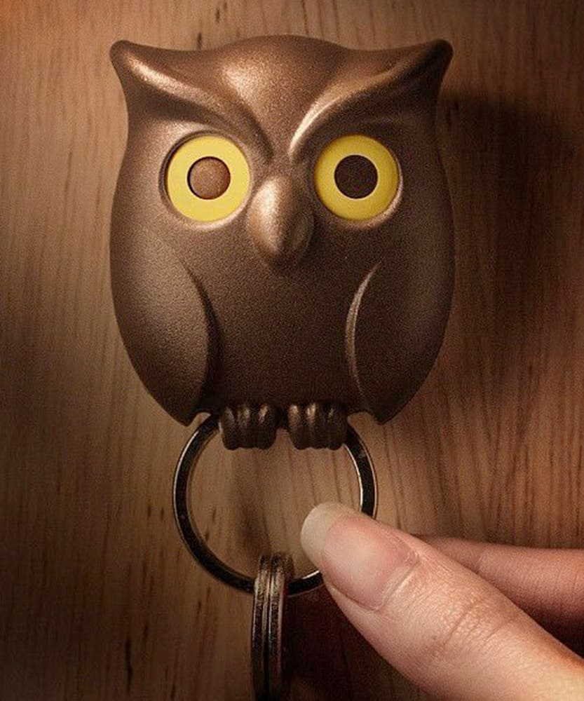 Guards your keys without batting an eye.