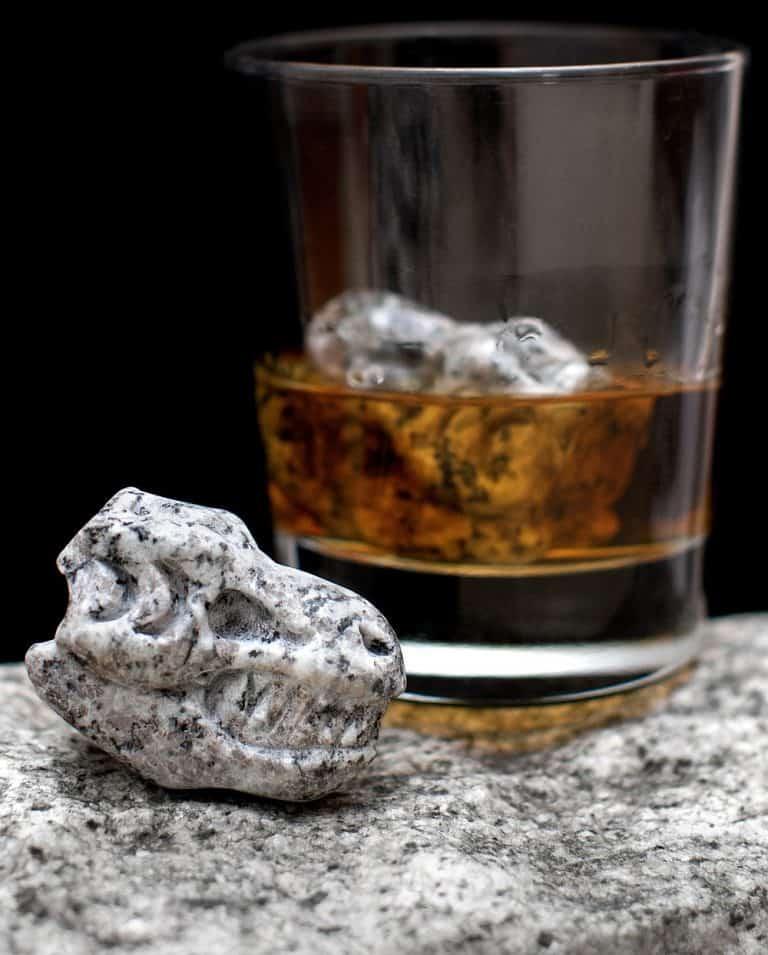 Whiskey-Bones-Granite-T-Rex-Skulls-Cool-Gift-for-Couples