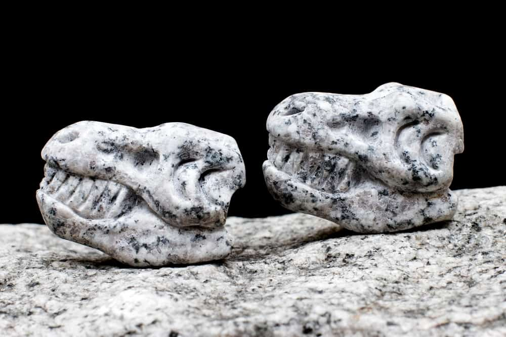 Whiskey-Bones-Granite-T-Rex-Skulls-Cool-Invention