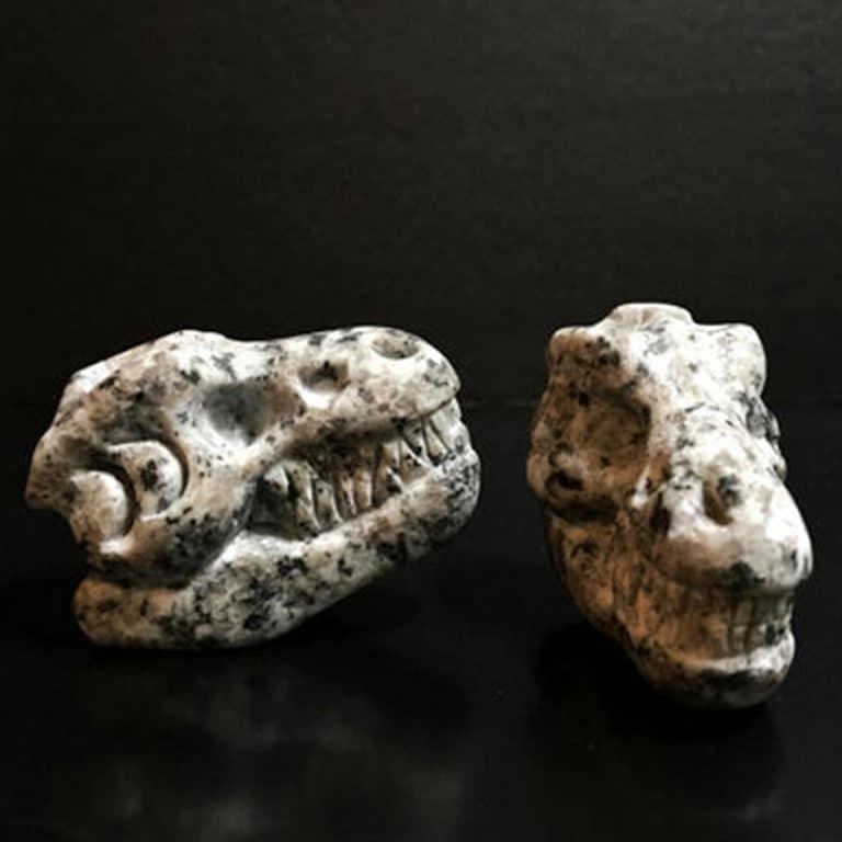Whiskey Bones Granite T-Rex Skulls Tasteless