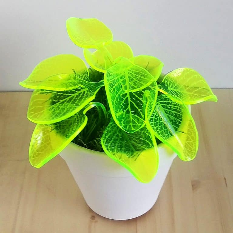Mar De Fe Night Light Plant Tabletop Decor