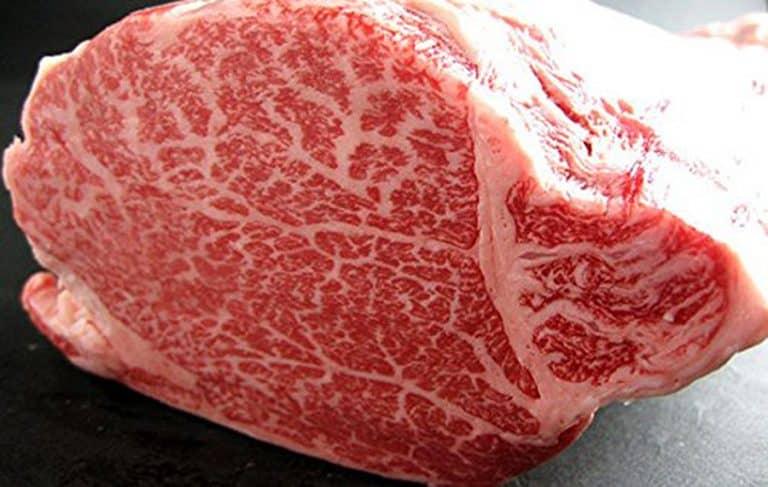 20lbs 100% A5 Grade Japanese Wagyu Kobe Beef Food