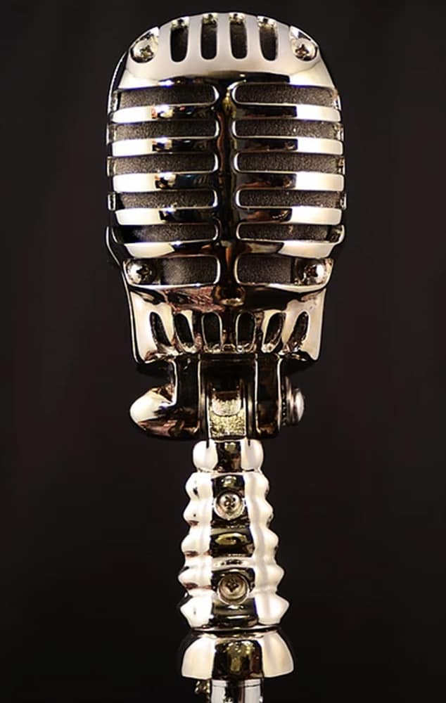 Skull Microphone Mic