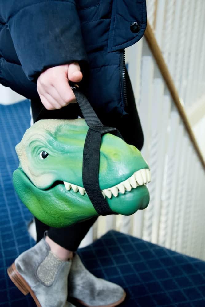 Suck UK Dino Case Hand Carry