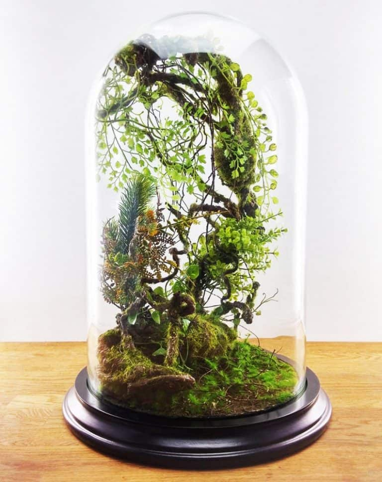 Vert + Sauvage Forest Terrarium Of Artificial Plants Decoration