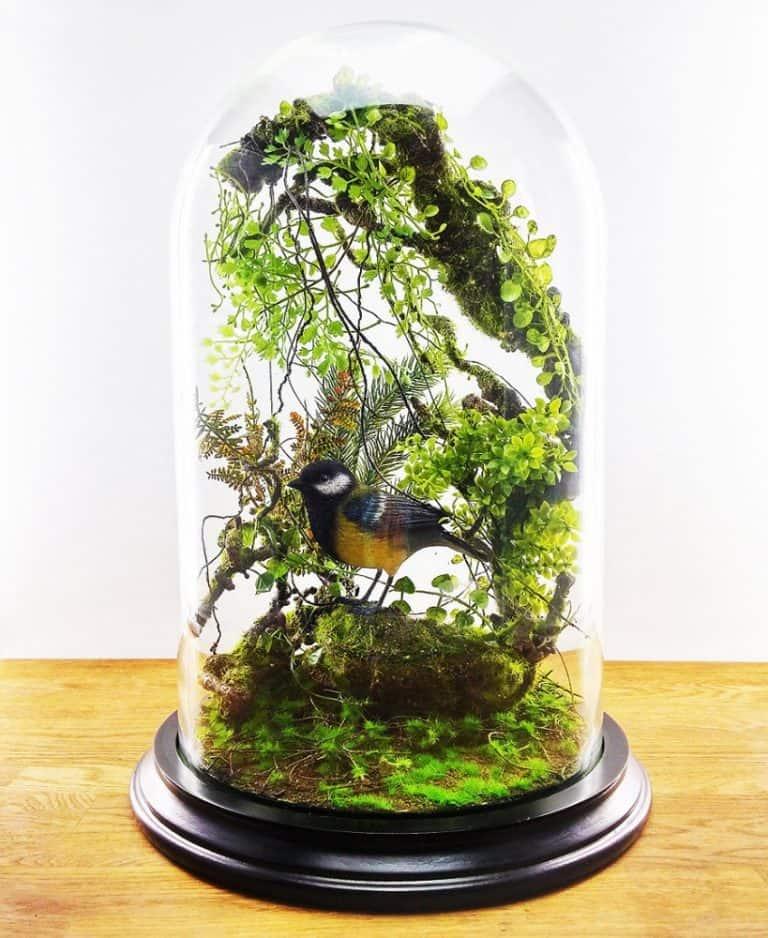 Vert + Sauvage Forest Terrarium Of Artificial Plants Handmade