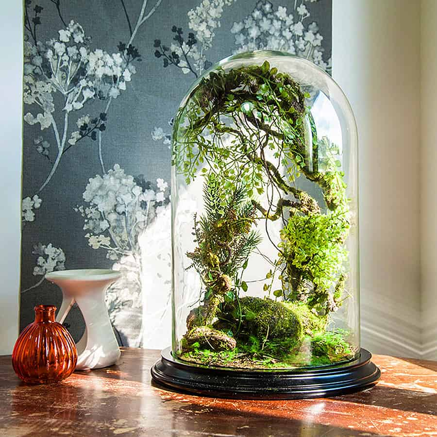 vert sauvage forest terrarium of artificial plants noveltystreet. Black Bedroom Furniture Sets. Home Design Ideas