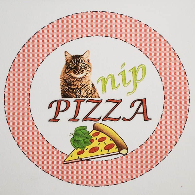 Fanti Catnip Pizza Pet Accessory