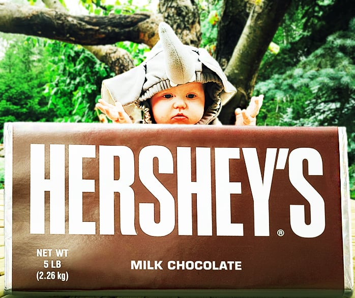 Hersheys 5 Pound Milk Chocolate Bar Cool Gift Idea