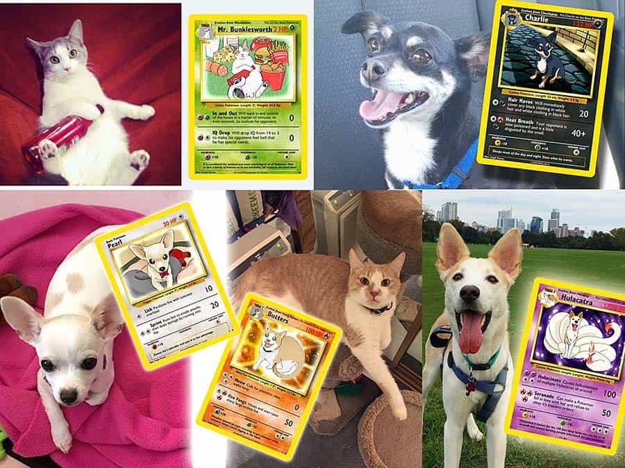 Step by Step Studio Pet Pokemon Card Customize