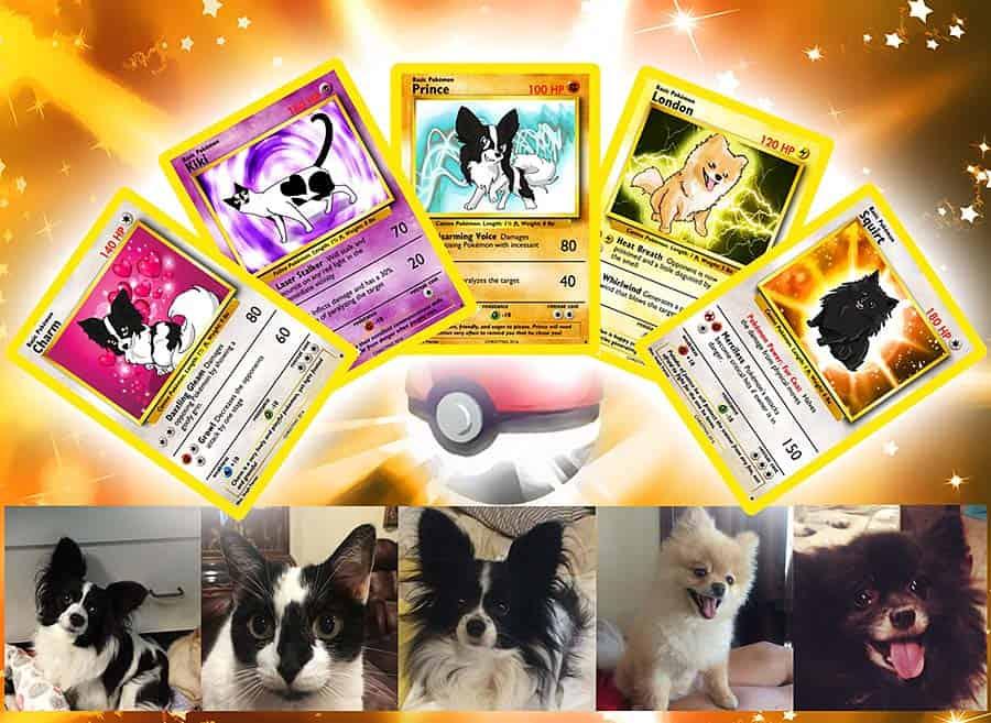 Step by Step Studio Pet Pokemon Card Handmade Product