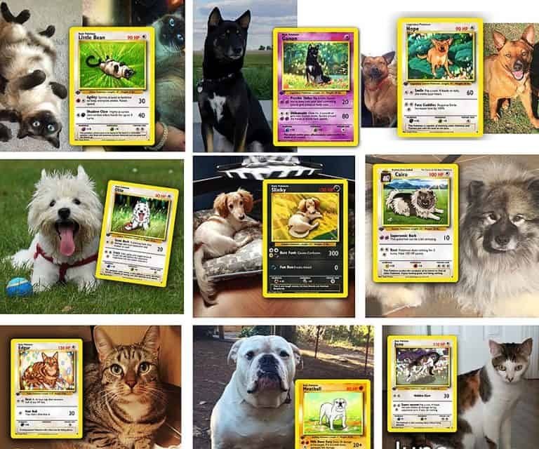 Step by Step Studio Pet Pokemon Card Personalized
