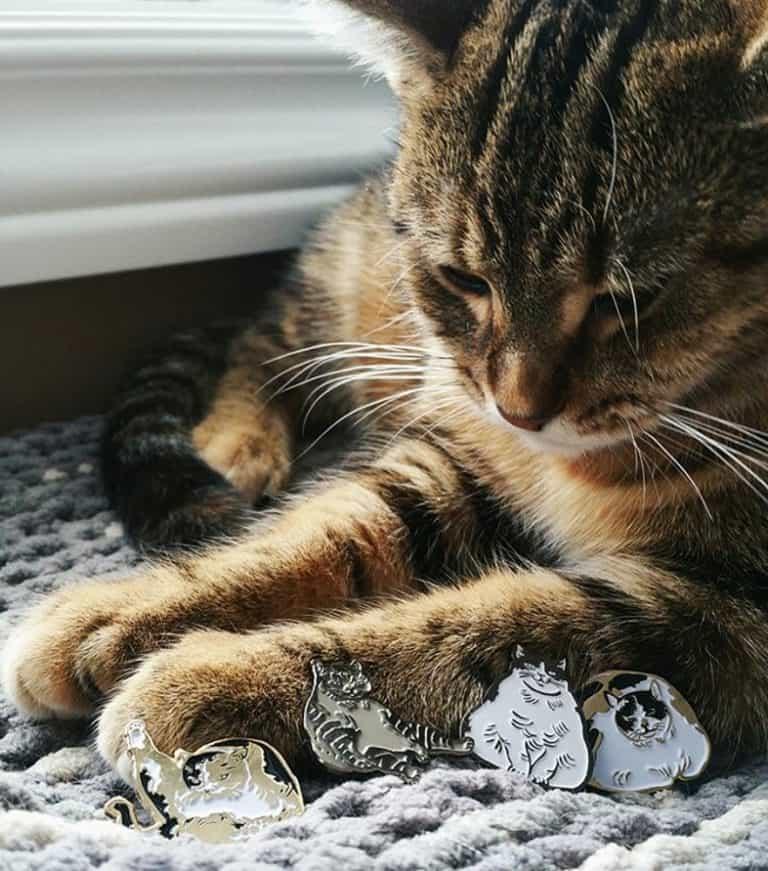 Sustai Art Cat Enamel Pins Clothes Accessories