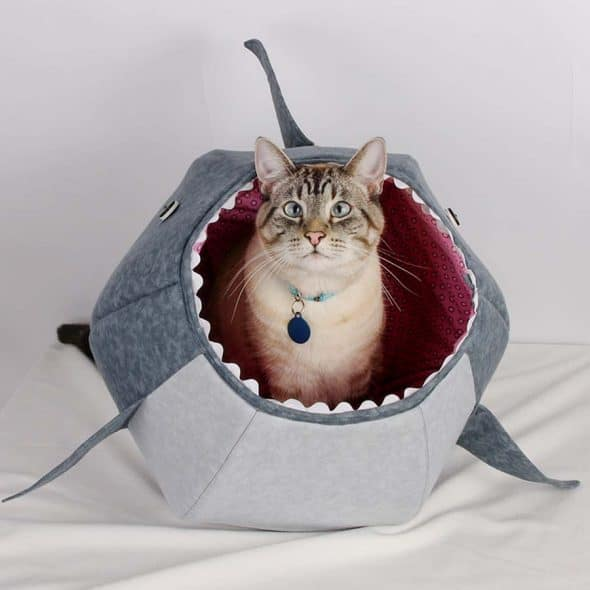 The Cat Ball Great White Shark Kitty Bed 100 Percent Cotton