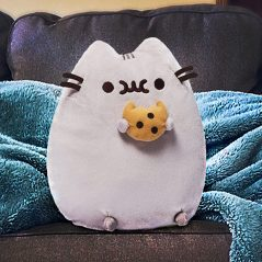 Sitting on a couch is better with a snuggly Pusheen.