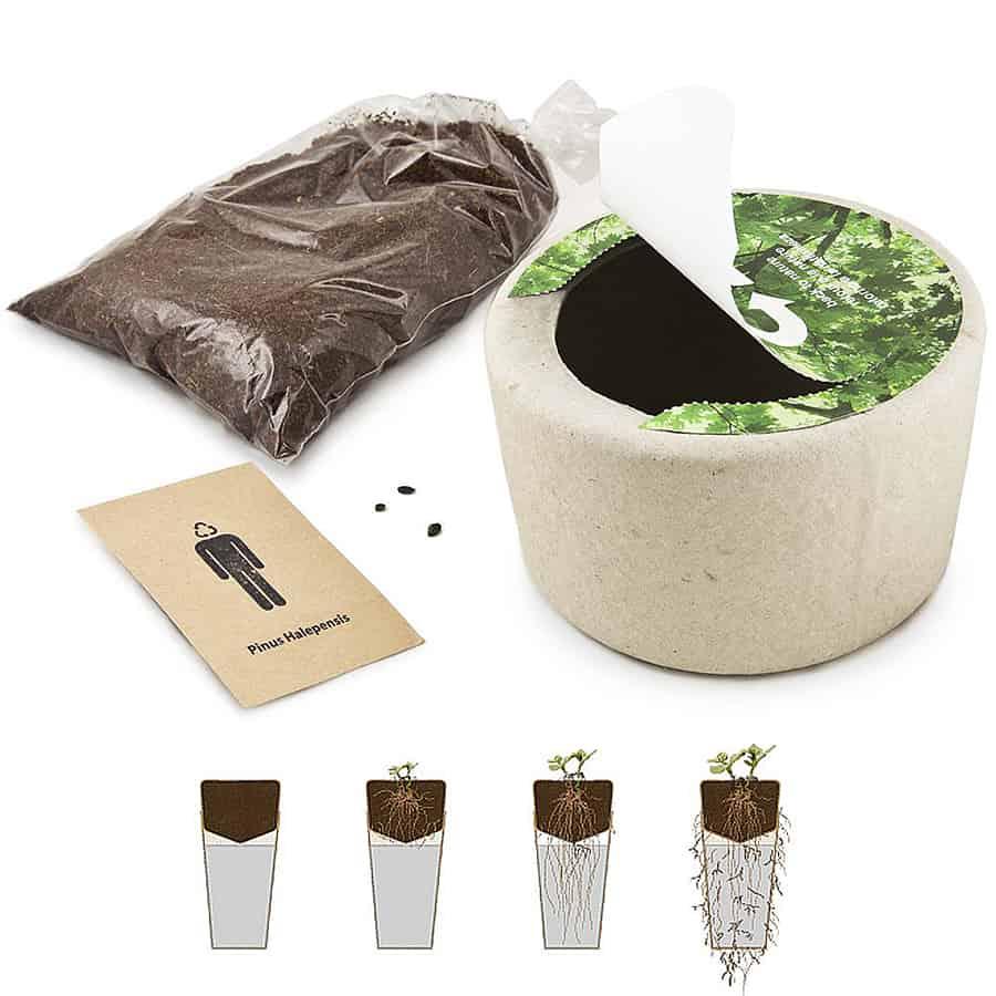 Bios Memorial Pet Loss Urn 100 Percent Biodegradable