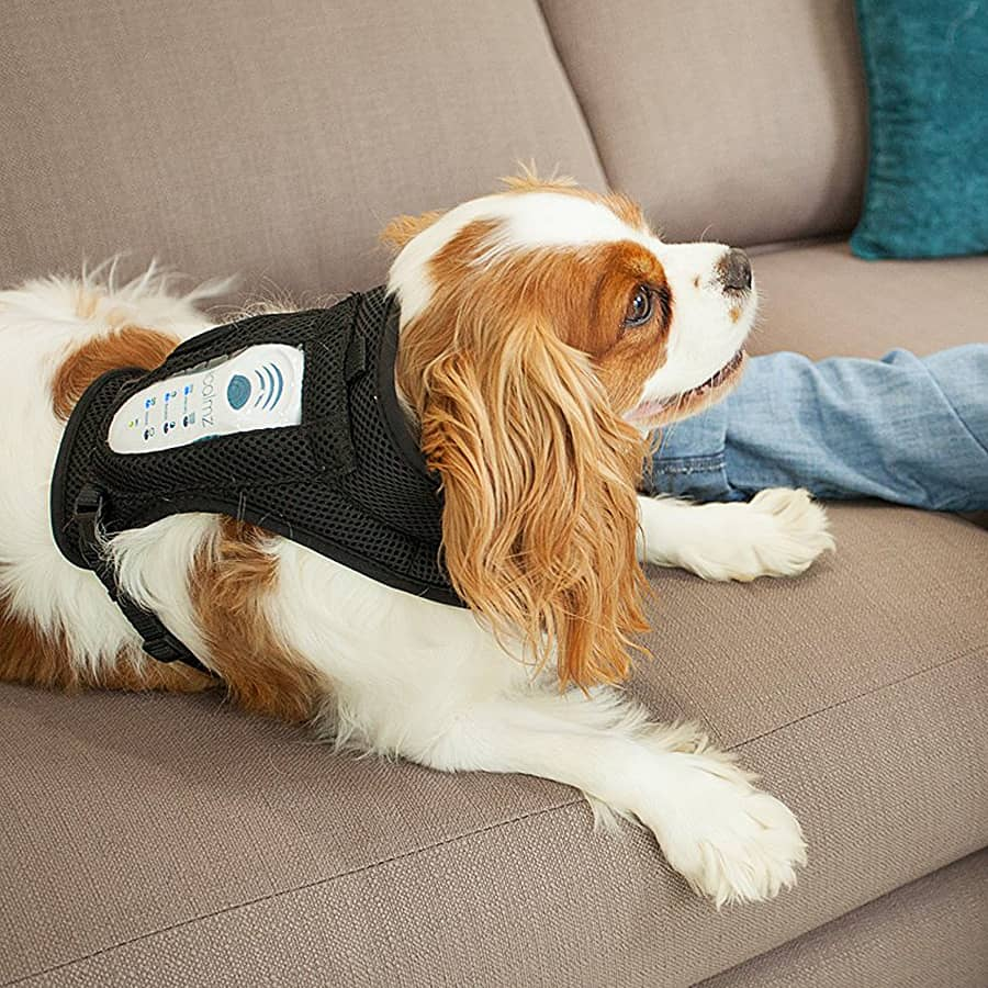 Calmz Anxiety Relief System for Dogs Therapy