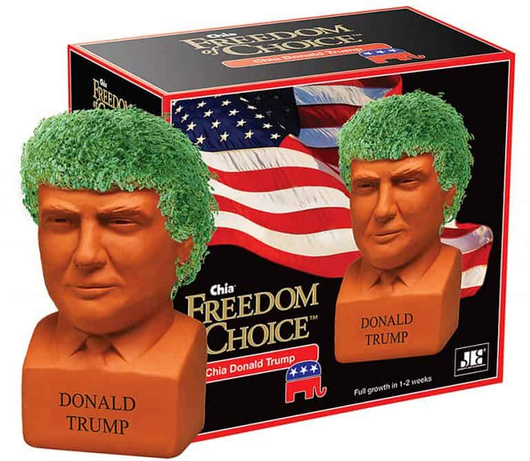 Chia Donald Trump Freedom of Choice Pottery Planter Pot