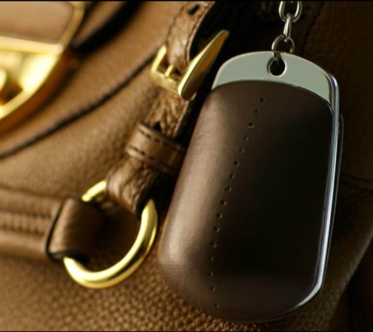 Handbag Dyetonator Security