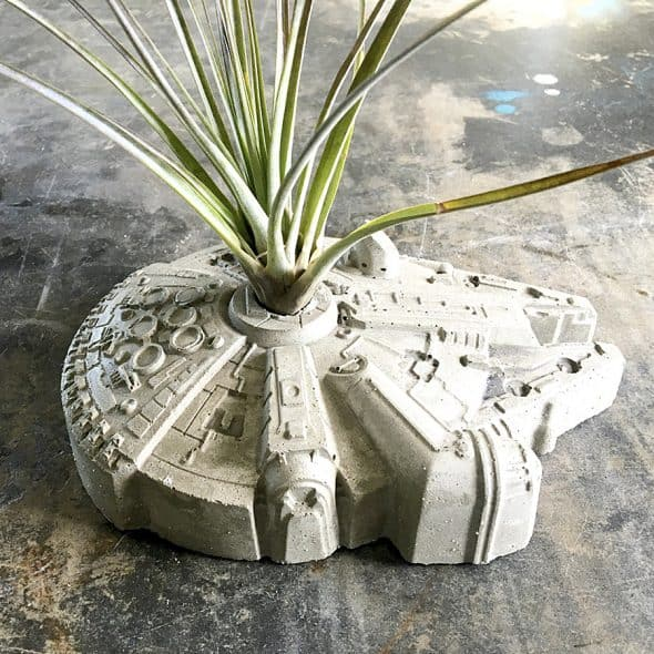 Plant it in the Millennium Falcon.