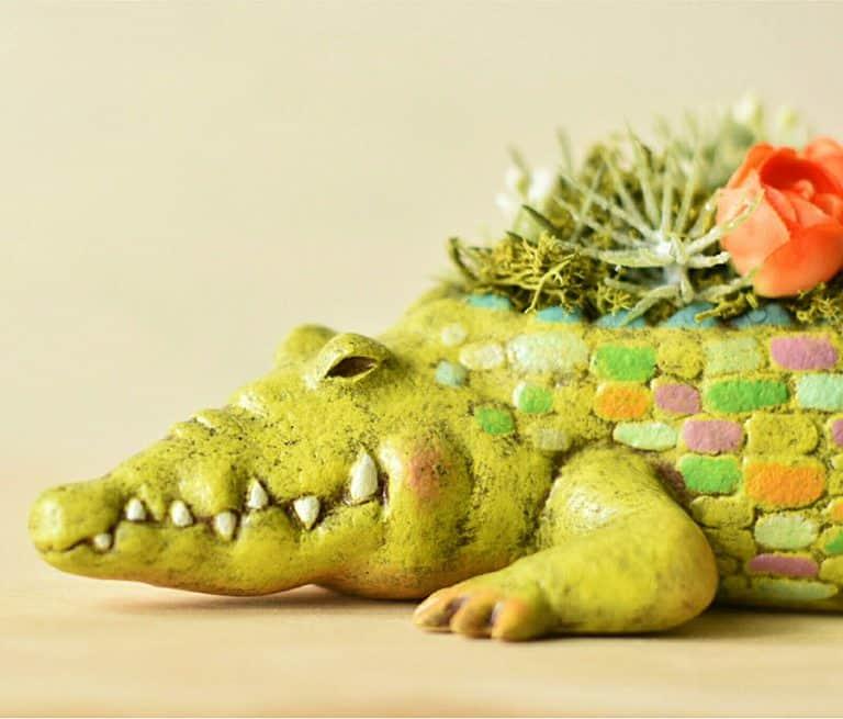 Harimogura Crocodile Planter Garden