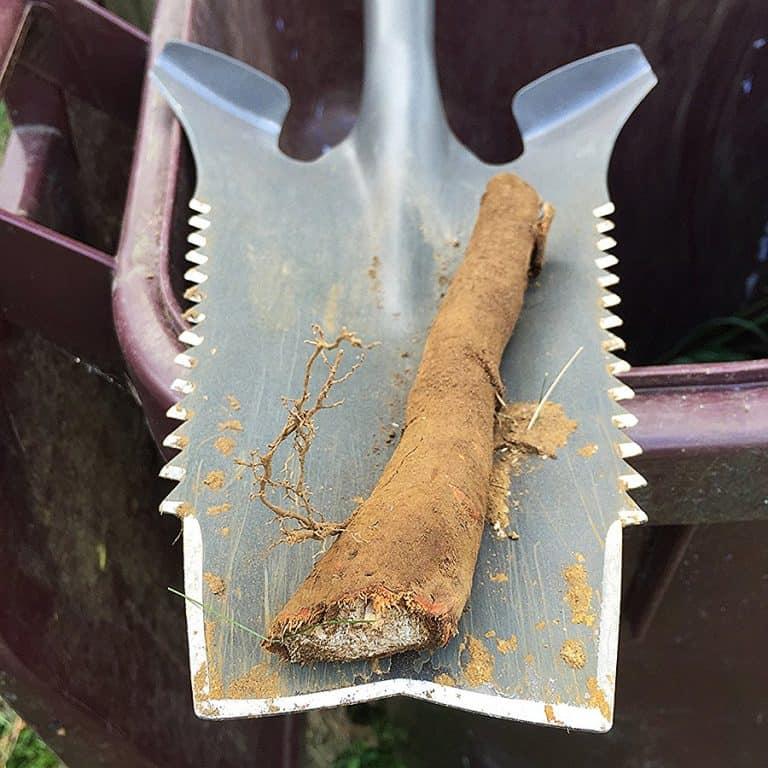 Radius Garden Root Slayer Gardening