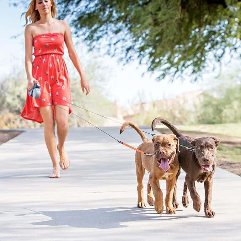 Wigzi Dual Doggie Pet Leash Dog