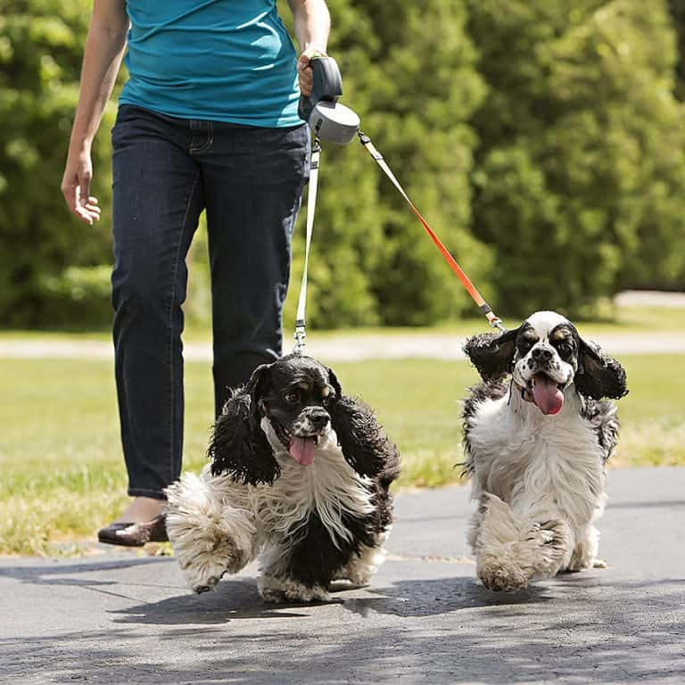 Wigzi Dual Doggie Pet Leash Dog Supply