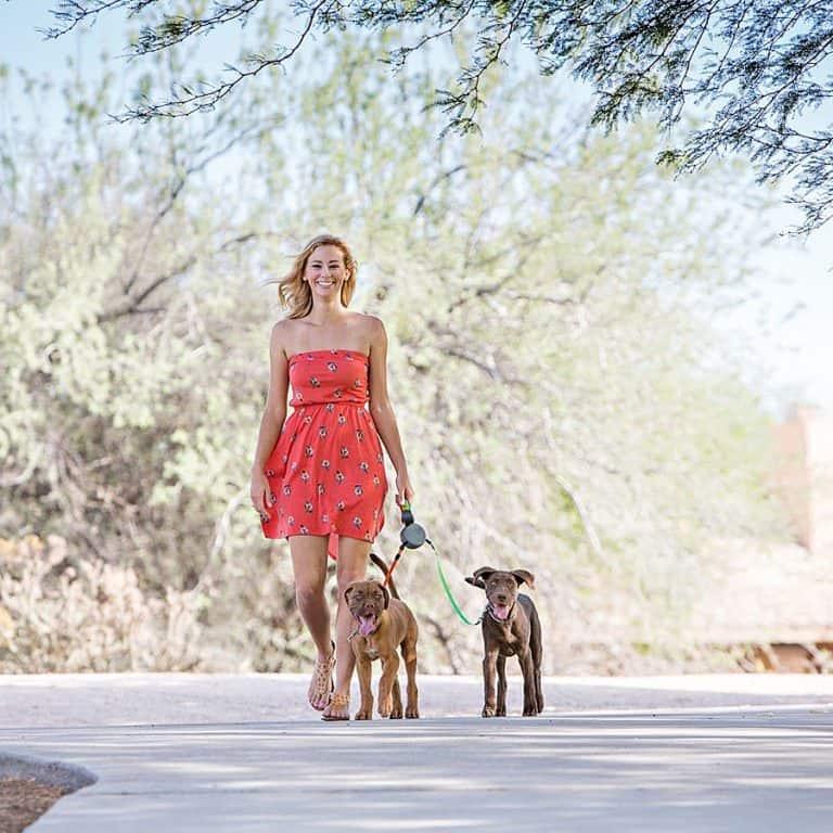 Wigzi Dual Doggie Pet Leash Leashes