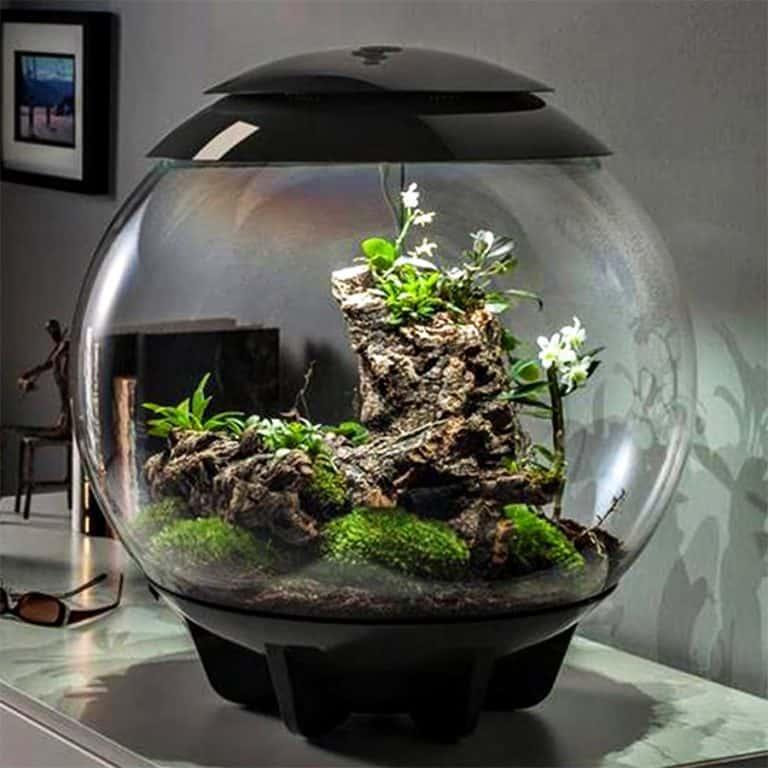 biOrbAIR Terrarium with LED Light Home Decoration