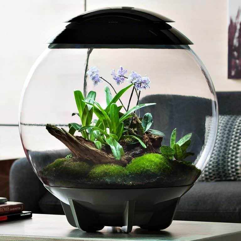 biOrbAIR Terrarium with LED Light Pet Supply