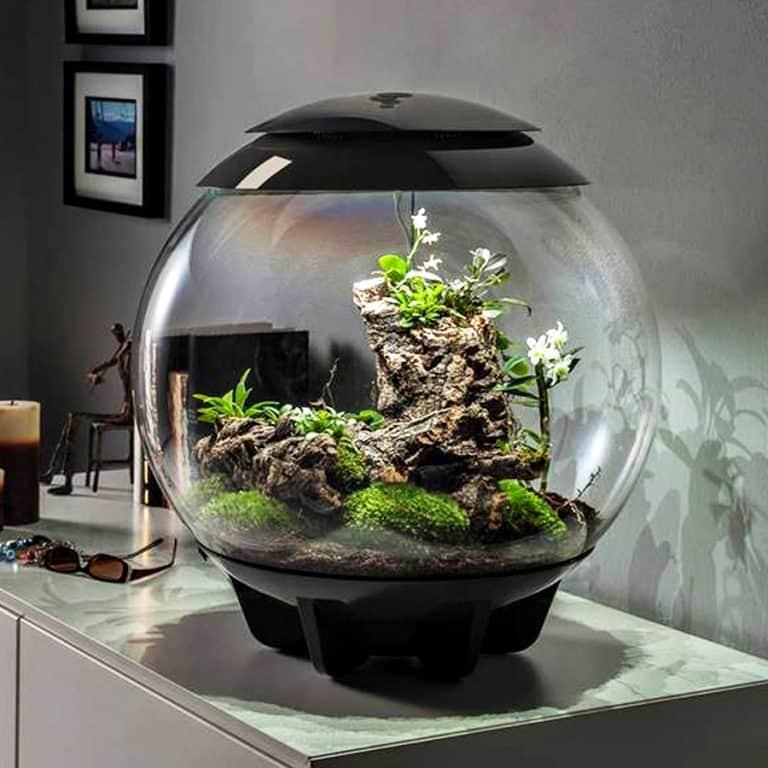 biOrbAIR Terrarium with LED Light Sphere