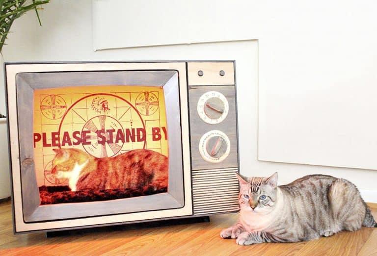 CatastrophiCreations Vintage TV Cat Bed Handmade Item