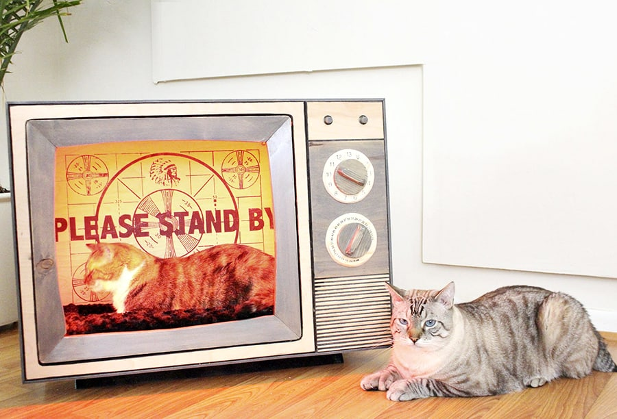 CatastrophiCreations Vintage TV Cat Bed Handmade Item