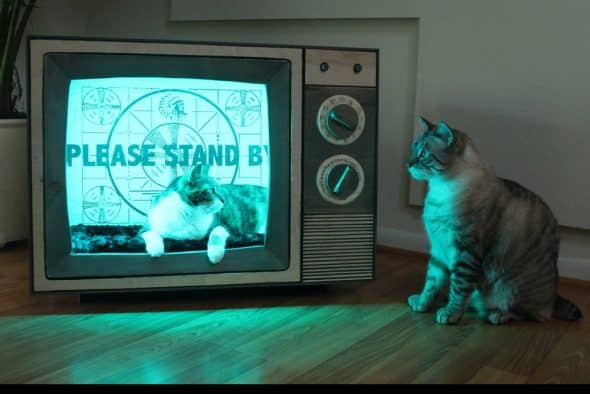 CatastrophiCreations Vintage TV Cat Bed LED Backdrop Light